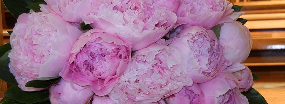 fiori-matrimonio-2014-carmen-3